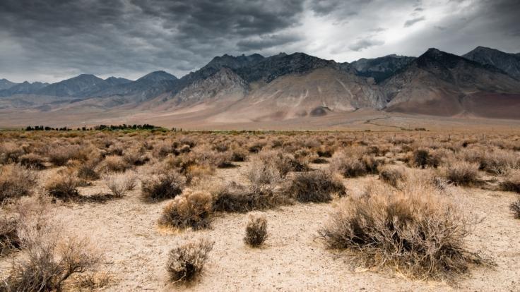 Die Polizei Nevadas hat in der Wüste nahe Las Vegas eine in Beton gegossene Frauenleiche gefunden. (Symbolbild)