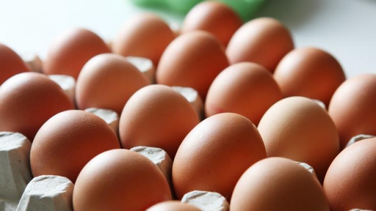 Von außen nur schwer zu erkennen: Aber kein Ei gleicht dem anderen.