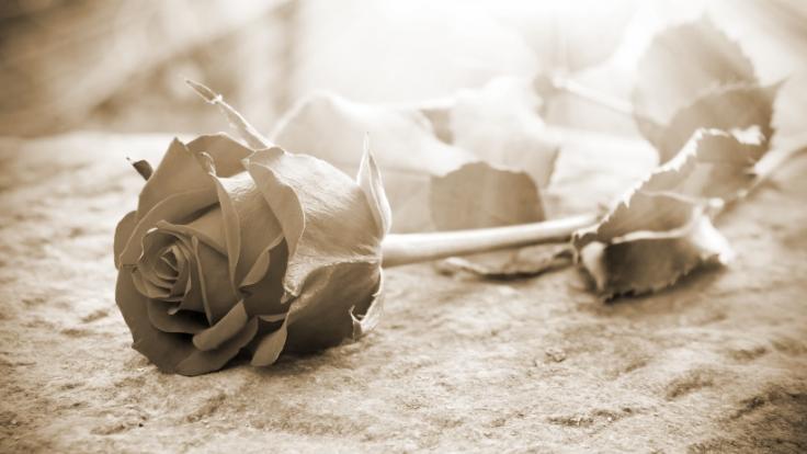 Die Kennedy-EnkelinSaoirse Kennedy Hill ist tot. (Foto)