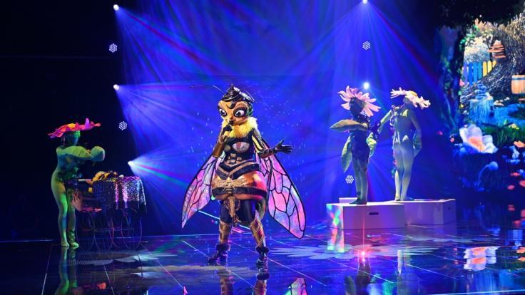 Die Biene ist als erste rausgeflogen (Foto)