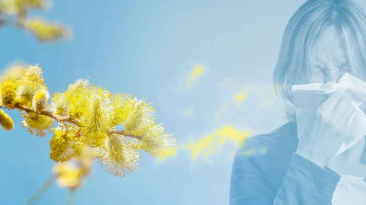 Ihr Bio- und Pollenflug-Wetter heute. (Foto)