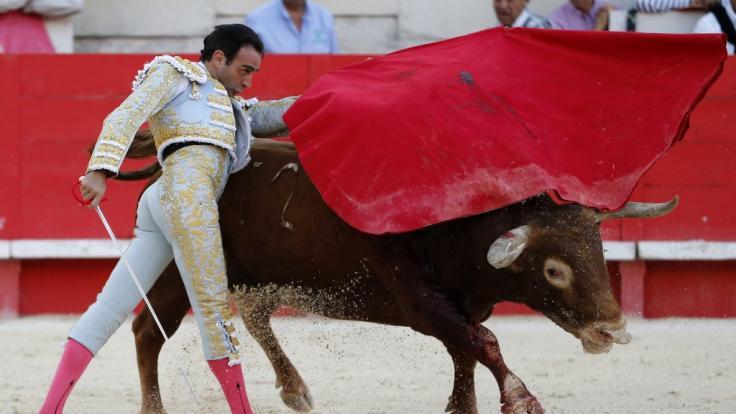 Torero Enrique Ponce hat sich schwer verletzt.