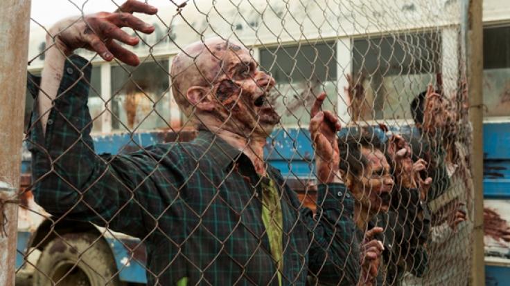 """Staffel 2 von """"Fear The Walking Dead"""" endet mit einer Doppelfolge. (Foto)"""
