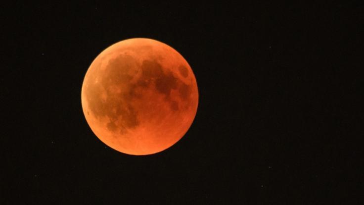 Der Vollmond im Oktober strahlt als Blutmond am Nachthimmel. (Foto)