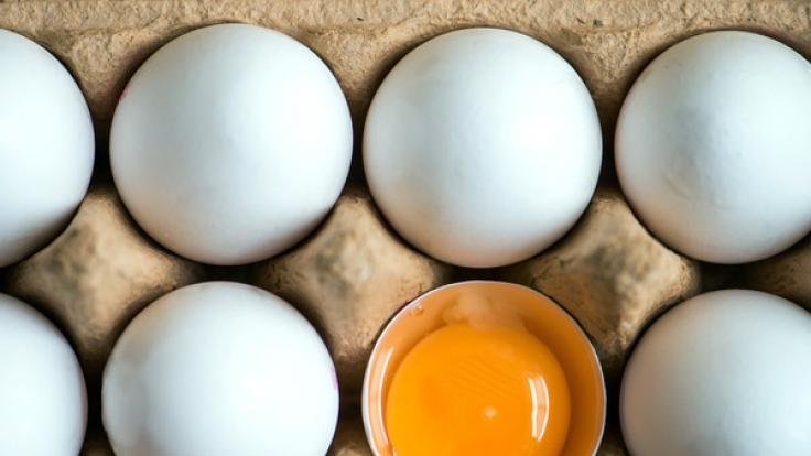 Der Lebensmittel-Skandal weitet sich aus. Auch in deutschen Eiern wurde das Insktizid Fipronil gefunden. (Foto)
