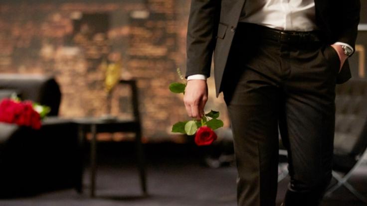 """""""Der Bachelor"""" Daniel Völz bekommt nächste Woche ordentlich was auf die Ohren. (Foto)"""