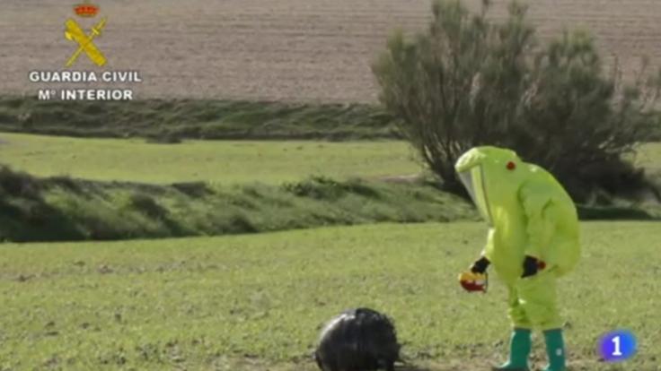 Diese Kugel fanden spanische Hirten in Calasparra. (Foto)
