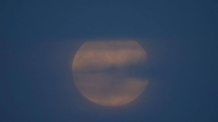 Im Januar strahlt ein riesiger Supermond am Nachthimmel. (Foto)