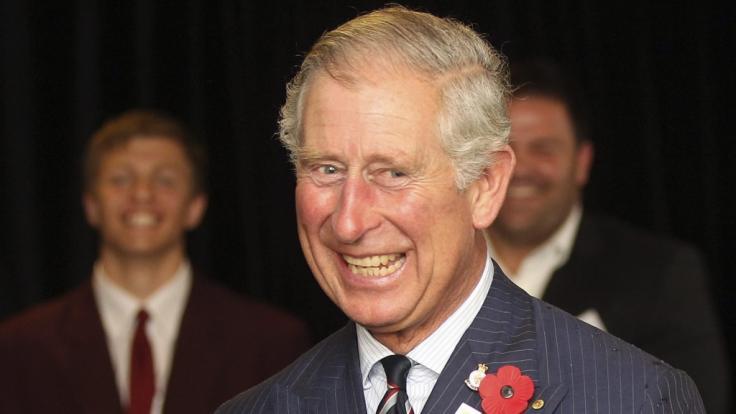 Prinz Charles feiert seinen 70. Geburtstag. (Foto)