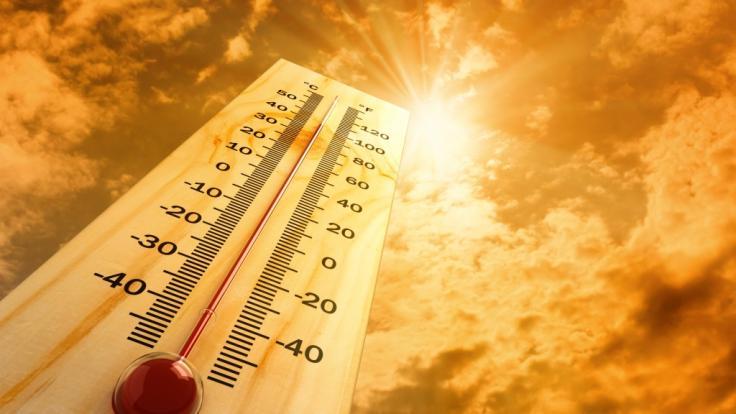 Sahara-Hitze am Muttertag in Deutschland. (Foto)