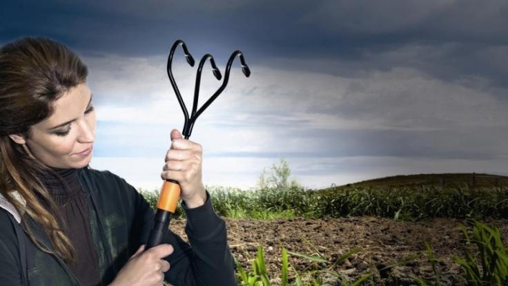 Gartengeräte für Frauen (Foto)