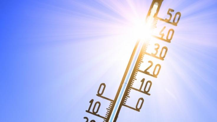 In der nächste Woche soll eine Hitzewelle über Deutschland rollen.
