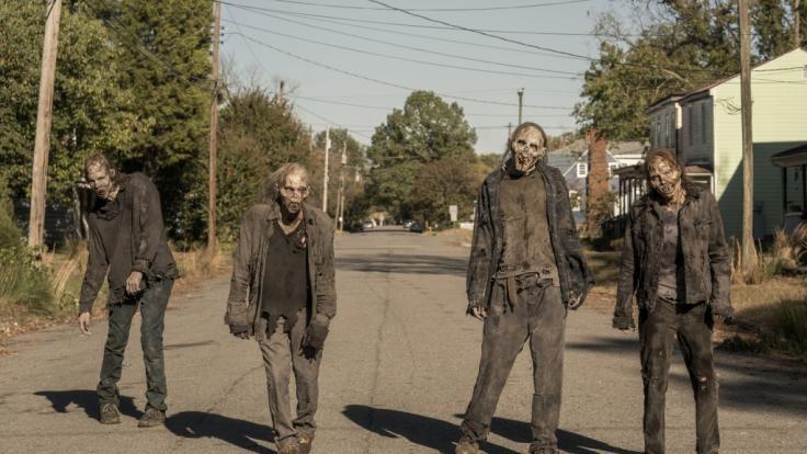 The Walking Dead Kostenlos Sehen