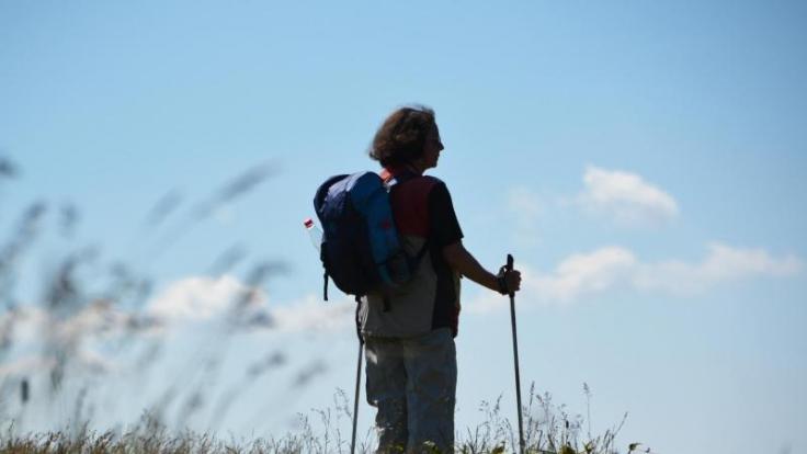 Wandern in Hessen: Der Rheingauer Klostersteig bietet eine 30 Kilometer lange Pilgerreise. (Foto)