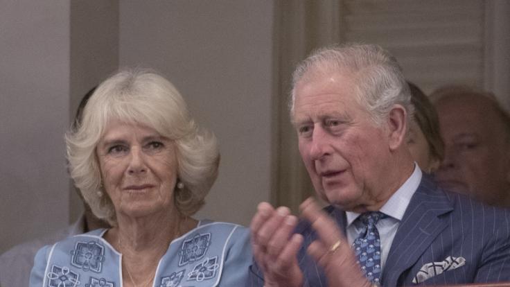 Prinz Charles ist besorgt was die Zukunft seiner Enkel betrifft. (Foto)