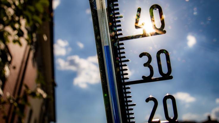 Pünktlich zum Sommer-Anfang 2019 stehen Deutschland blendende Wetteraussichten ins Haus. (Foto)