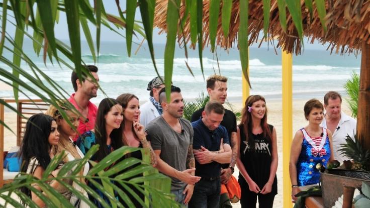 """Die zwölf Kandidaten von """"Ich bin ein Star, holt mich hier raus!"""" durften sich vor dem Einzug ins Dschungelcamp an einer Strandbar kennenlernen. (Foto)"""