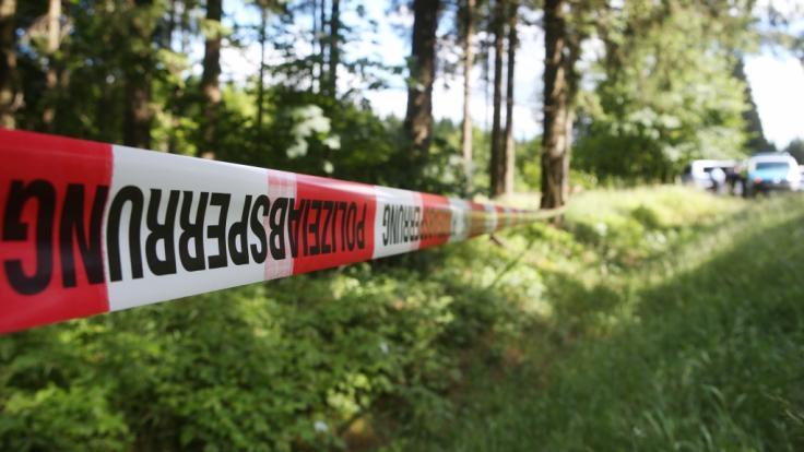 Das Verschwinden von zwei Schwestern in Kalifornien löste eine groß angelegte Suchaktion aus - mit erfreulichem Ausgang (Symbolbild).