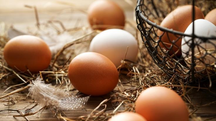 Um das Ei ranken sich diverse Mythen. (Foto)