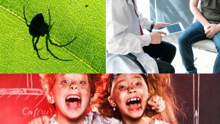 Ein Penis-Fall, zwei Lausbuben und ein Spinnenbiss sorgten für eine Tragödie.