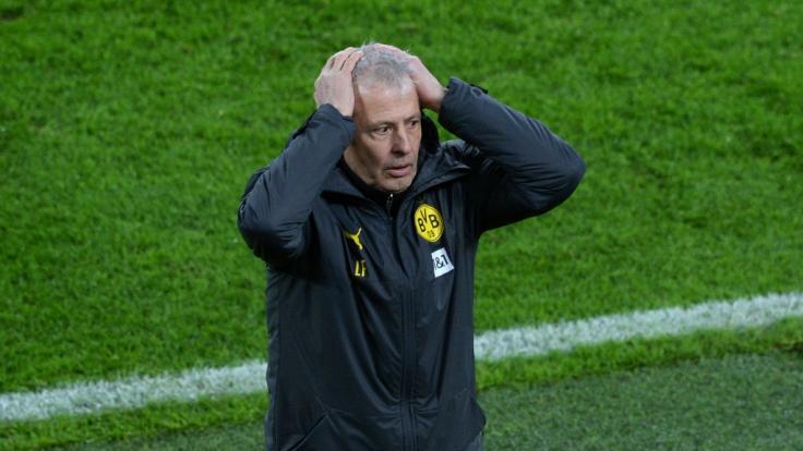 Der BVB soll sich von Trainer Lucien Favre getrennt haben. (Foto)
