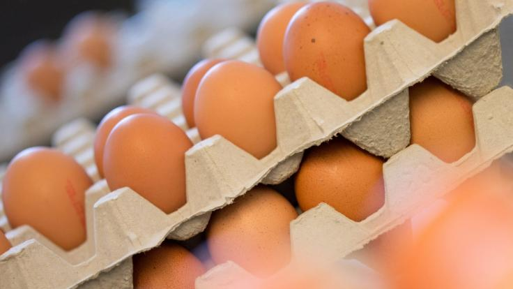 Die Sonnendorfer GmbH hat mehrere Eier-Sorten wegen möglicher Salmonellen zurückgerufen. (Foto)