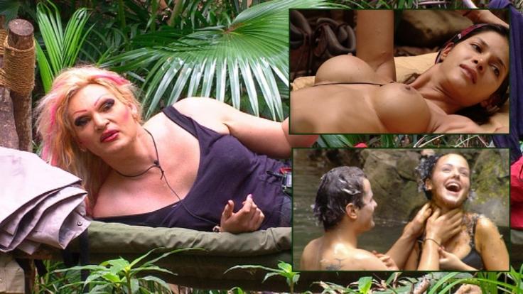 Nach der Schnarchausgabe von 2015 muss das Dschungelcamp 2016 dringend wieder mehr Unterhaltung bieten. (Foto)