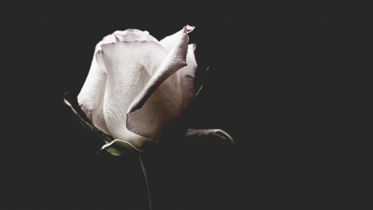 Der britische Schauspieler Nicky Henson ist im Alter von 74 Jahren gestorben (Symbolbild). (Foto)