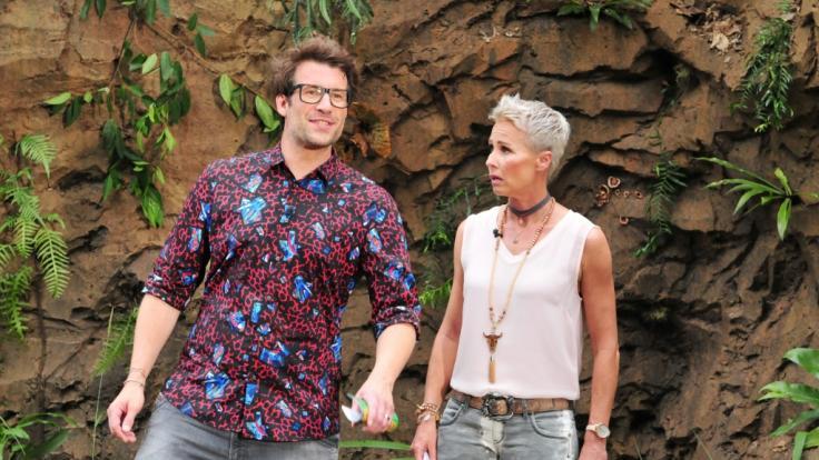 Moderiert wird das RTL-Dschungelcamp auch in diesem Jahr vonSonja Zietlow und Daniel Hartwich. (Foto)
