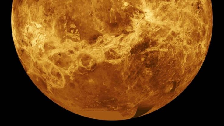 Könnte in der Atmosphäre der Venus Leben entstehen oder existieren? (Foto)