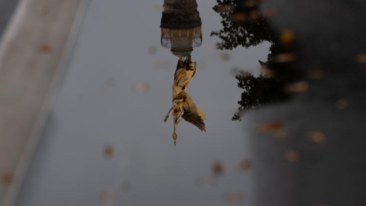 Trüb, nass, kühl: Der Herbst hat Deutschland Ende September 2020 fest im Griff. (Foto)