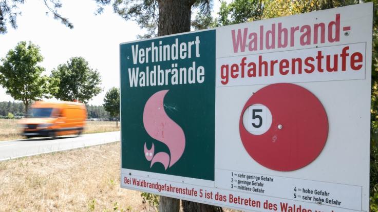 In vielen Regionen Deutschlands herrscht aktuell die höchste Waldbrand-Gefahrenstufe. (Foto)