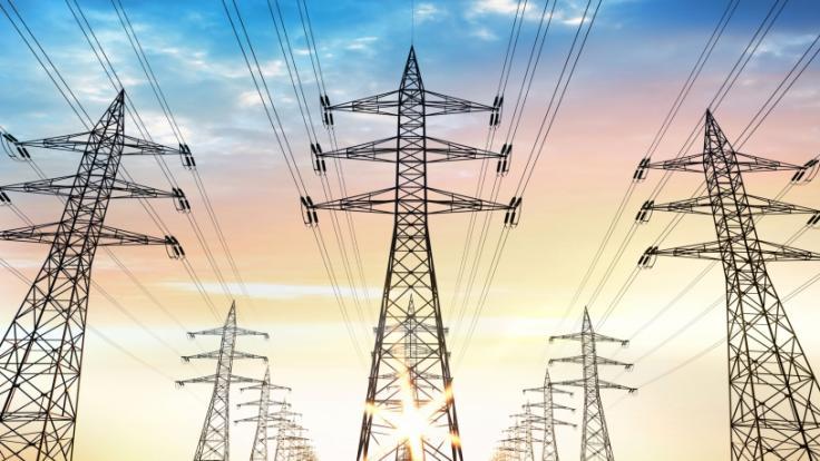 Wegen hoher Stromkosten kündigte der Stromanbieter Immergrün jetzt einigen Kunden. (Foto)