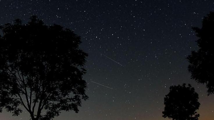 Trübe Sternschnuppen-Aussichten! Die Leoniden werden möglicherweise von Wolken verdeckt.