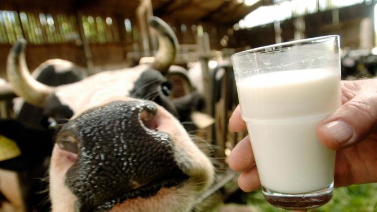Milch hat weniger positive Auswirkungen auf unseren Körper, als bisher angenommen.