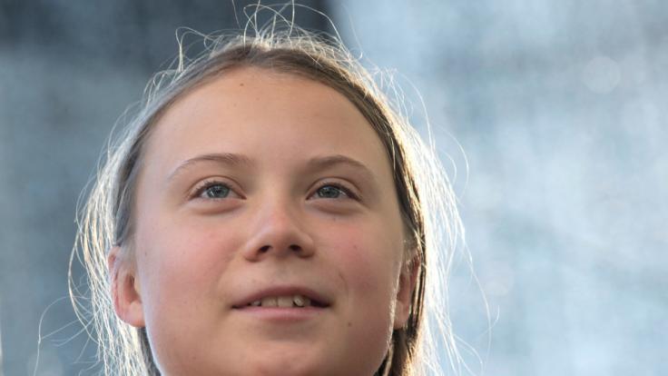 Greta Thunberg polarisiert.