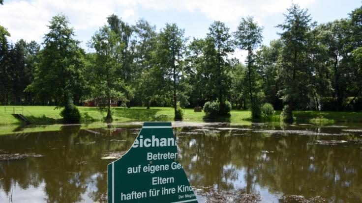 Im Zwickauer Stadtteil Planitz wurde die Leiche einer 17-Jährigen in einem Teich gefunden. (Foto)