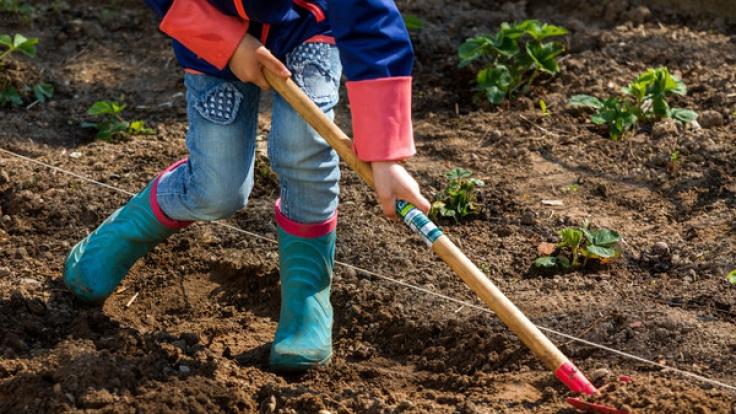Im April schaffen Sie die Grundlage für eine ertragreiches und blühendes Gartenjahr.