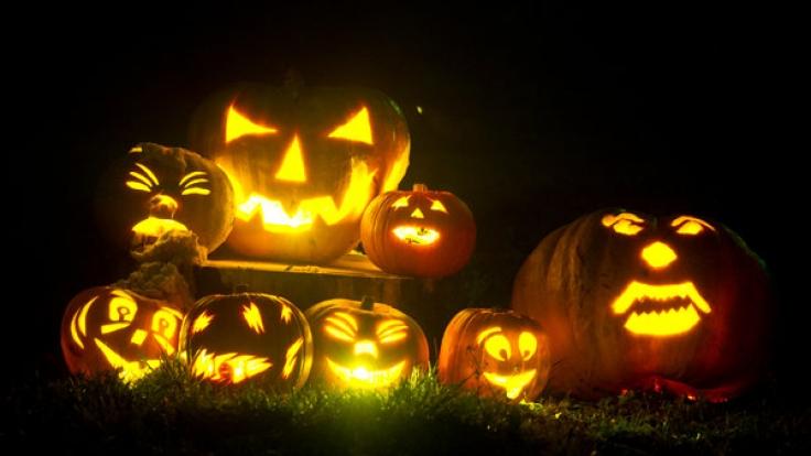 Der Kürbis gehört auch zu Halloween 2014 zur Standard-Deko. (Foto)