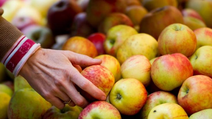 Es gibt unzählige Ernährungsweisen. Eine besonders extreme Form ist der Frutarismus. Bei den Frutariern kommt nur das auf den Tisch, was die Natur ihnen freiwillig gibt, also Früchte und Samen.