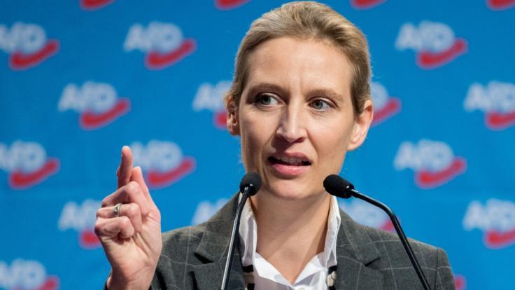 Eine Großspende aus der Schweiz könnte Alice Weidel und der AfD zum Verhängnis werden.