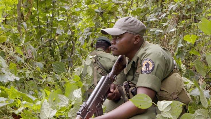 GEO Reportage: Virunga bei Arte (Foto)