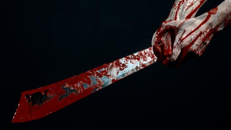Ein 19-Jähriger hat seine 24-Jährige Freundin zerstückelt. (Foto)
