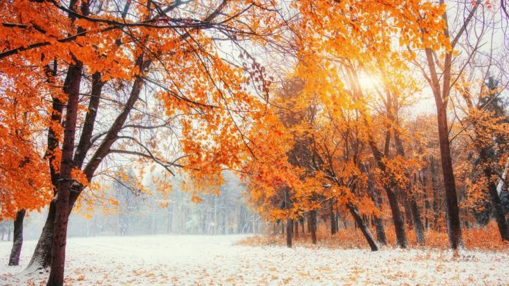Wie wird das Wetter im Oktober 2021? (Foto)