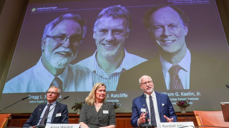Der Nobelpreis für Medizin geht in diesem Jahr an Gregg Semenza (hinten, l-r, USA), Peter Ratcliffe (Großbritannien) und William Kaelin (USA) für ihre gemeinsame Entdeckung molekularer Mechanismen, mit denen Zellen den Sauerstoffgehalt wahrnehmen.