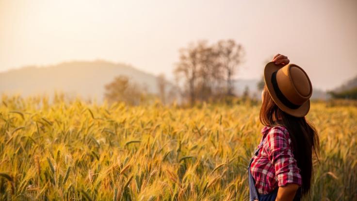 Bauernregeln zur Wettervorhersage gibt es seit Jahrhunderten.