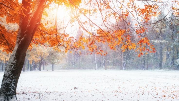 Der Hundertjährige Kalender sagt eher durchwachsenes November-Wetter voraus.