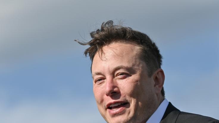"""Elon Musk, Tesla-Chef, soll Technologie besitzen, die es ihm ermöglicht, einen echten """"Jurassic Park"""" zu erbauen. (Foto)"""