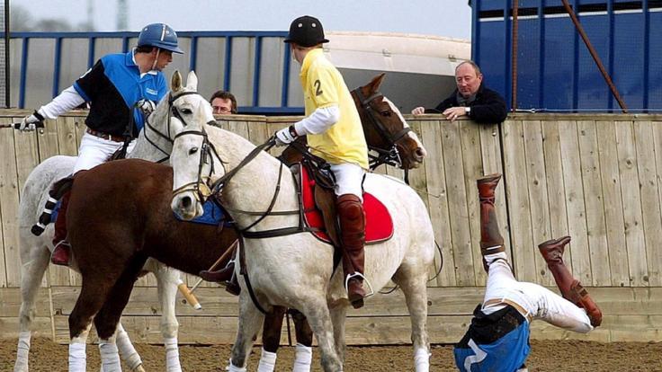 Prinz William purzelt völlig unroyal vom Pferd. (Foto)
