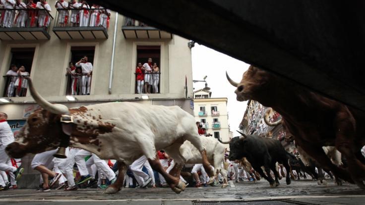 Beim Auftakt des Stiertreibens in Pamplona wurden mindestens fünf Personen verletzt. (Foto)